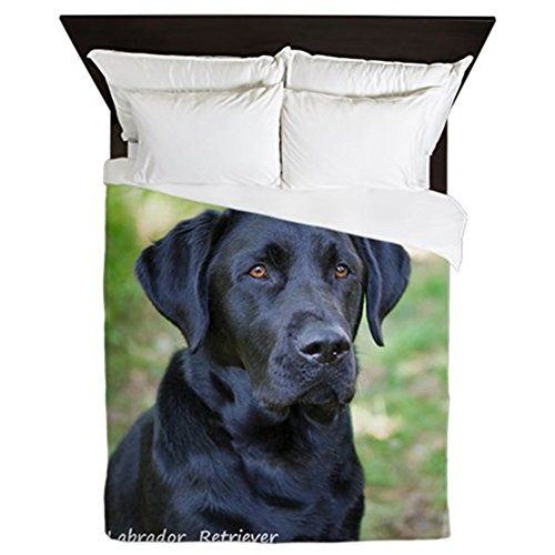 Black Labrador Retriever Print Queen Size Duvet Cover